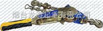 青岛链条紧固器,4000kg链条收紧器供应商,龙海起重