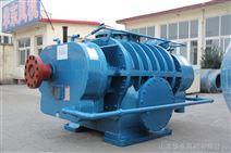 罗茨真空泵厂家吸料泵的原理