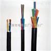 ZRC-HYA53 HYA53阻燃通信电缆 ZR-HYA22